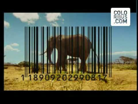 động vật barcode